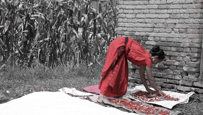 nepal_088_SP