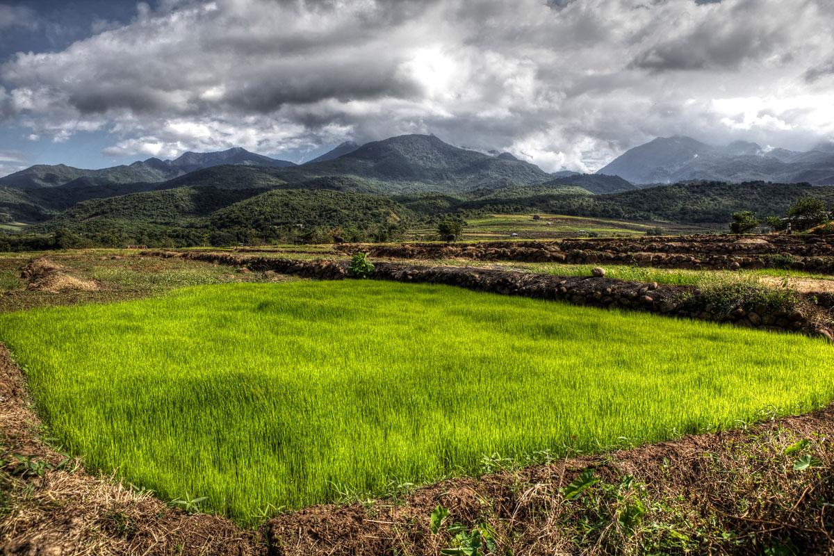 paesaggi-indonesia_023_SP