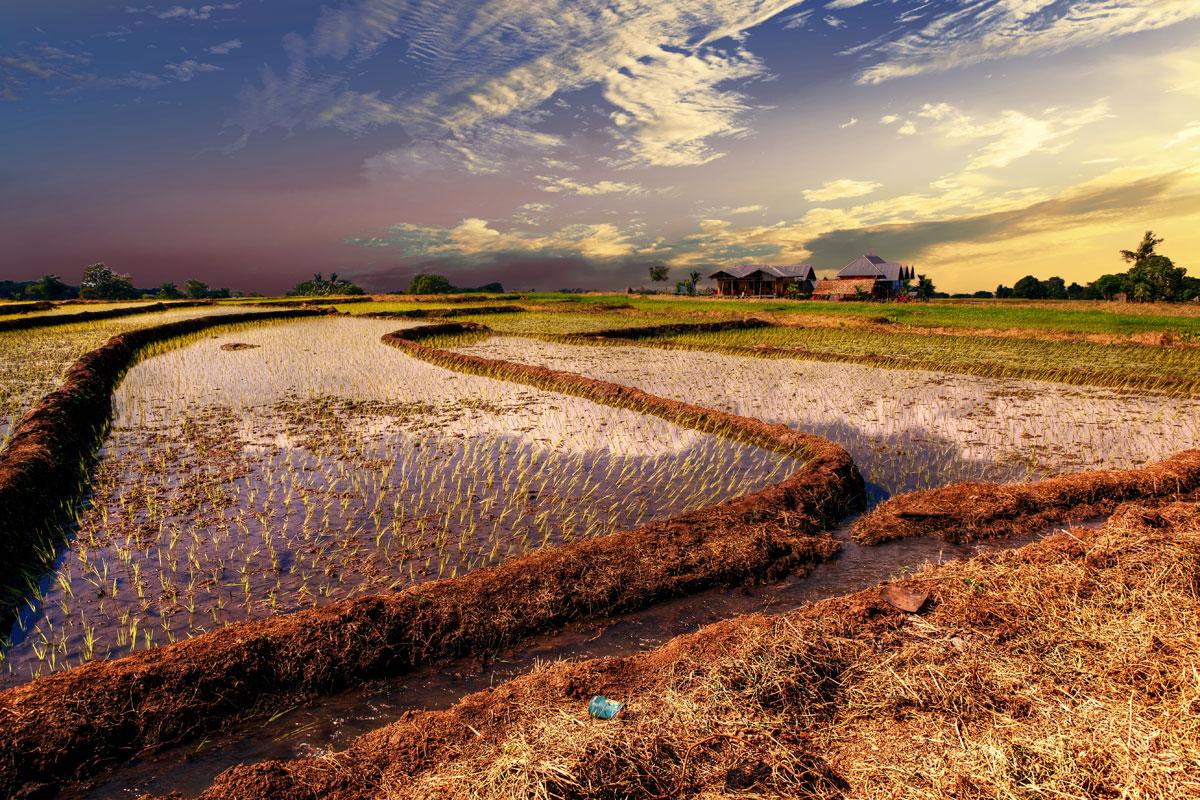 paesaggi-indonesia_026_SP