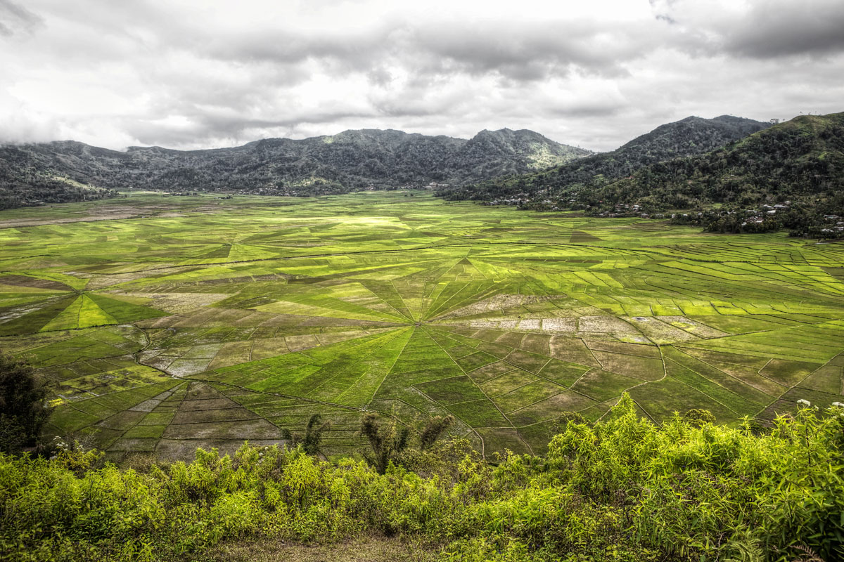 paesaggi-indonesia_035_SP