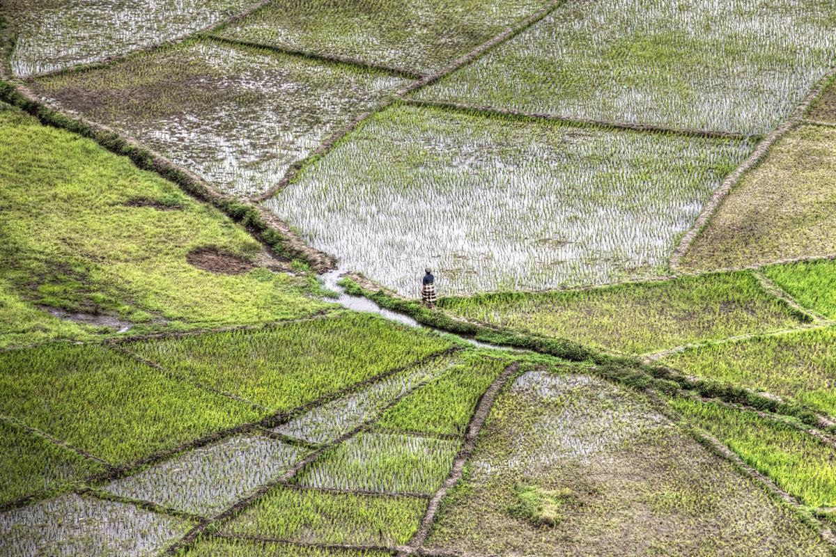 paesaggi-indonesia_058_SP