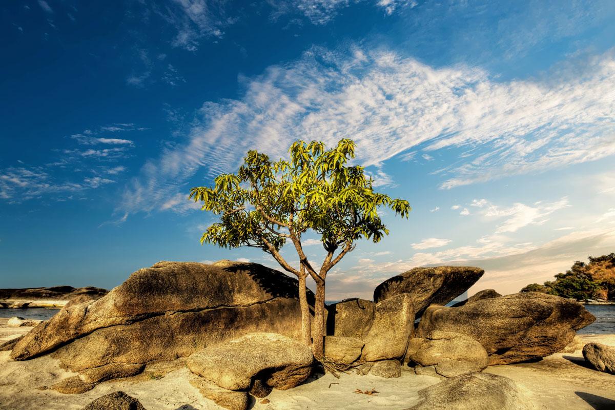 paesaggi-indonesia_070_SP