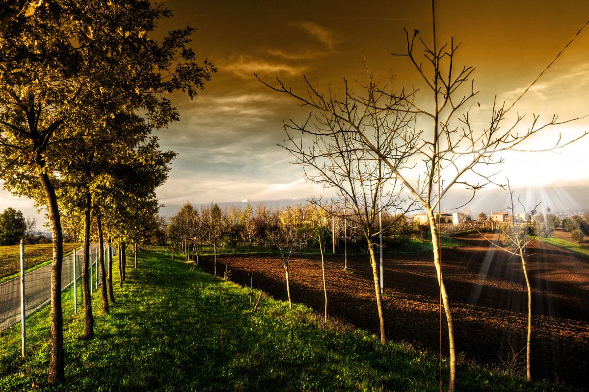 paesaggi-italia_001_SP