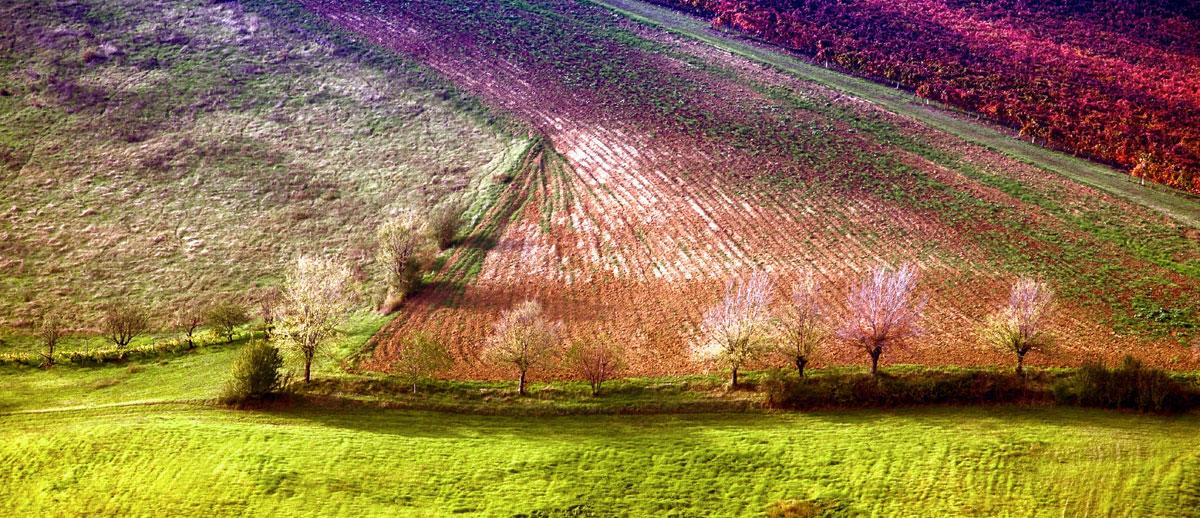 paesaggi-italia_004_SP