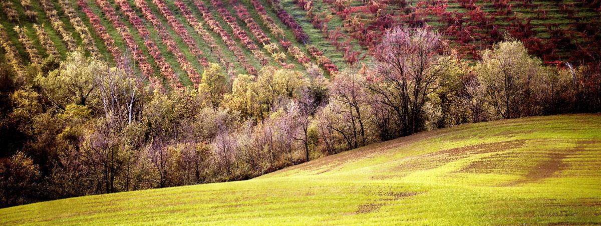 paesaggi-italia_006_SP