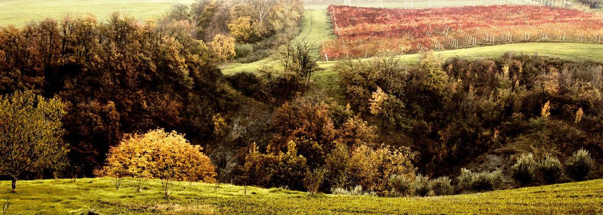 paesaggi-italia_012_SP