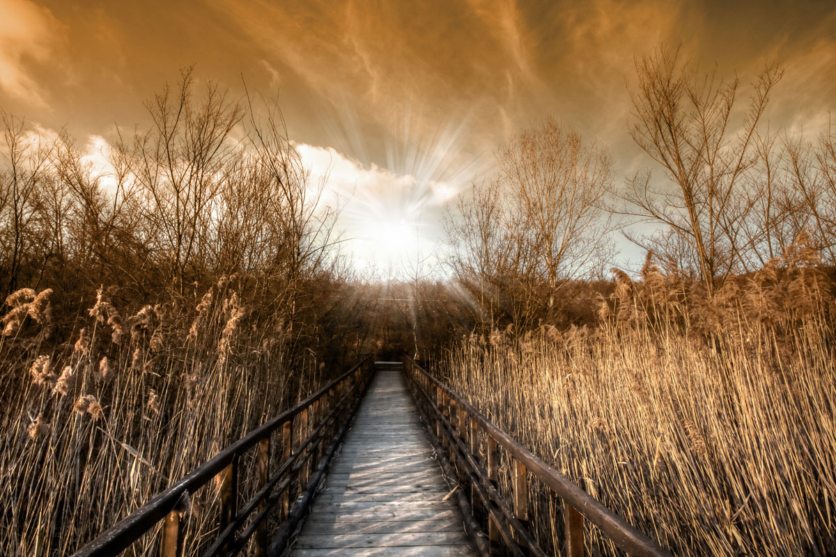 paesaggi-italia_027_SP
