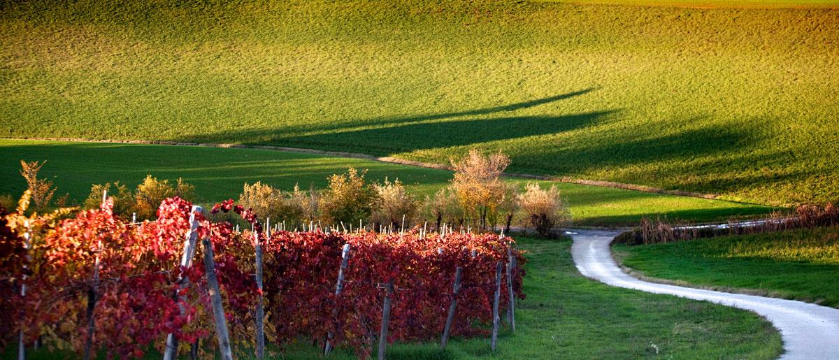 paesaggi-italia_030_SP