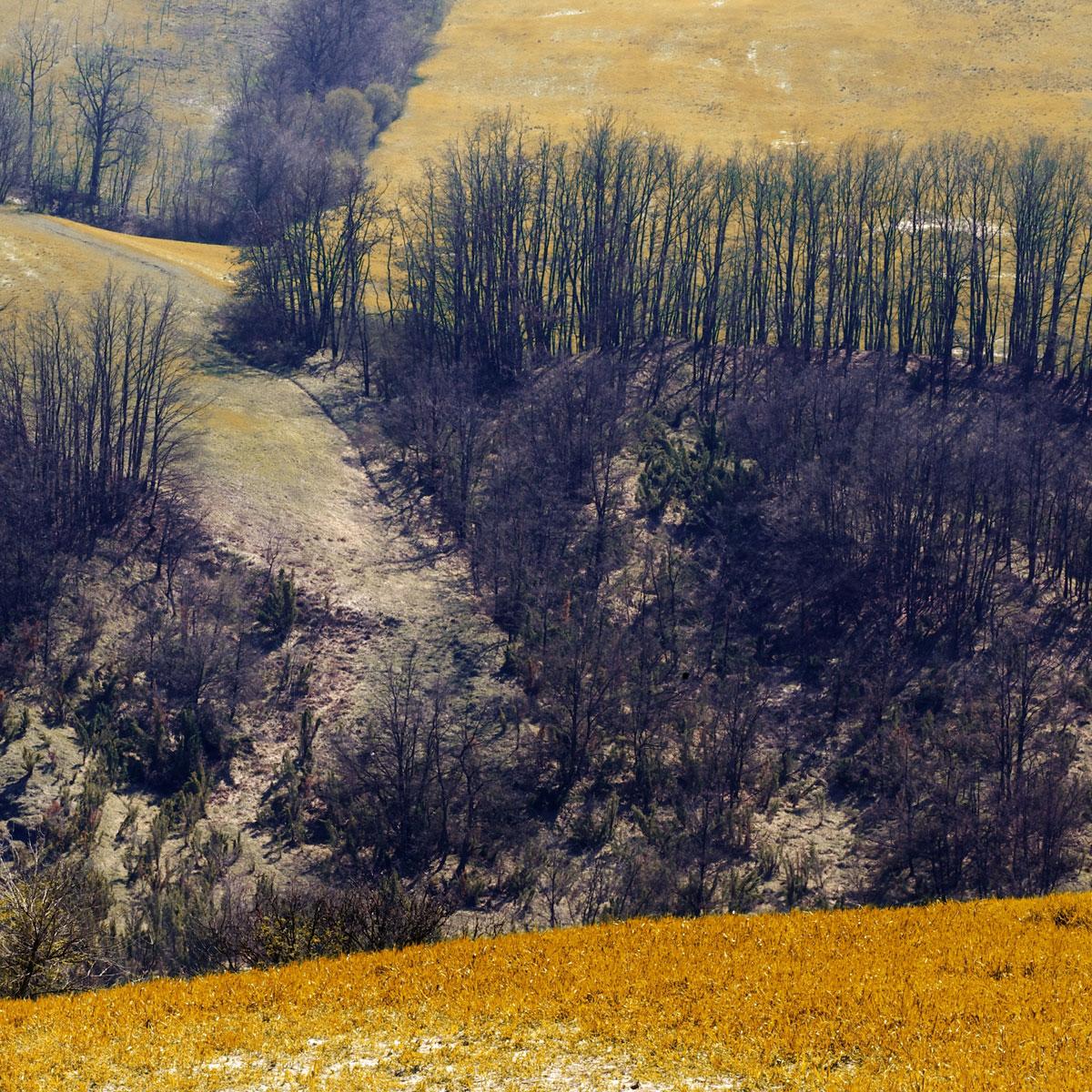 paesaggi-italia_065_SP