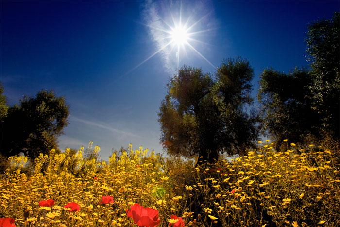 paesaggi-italia_081_SP