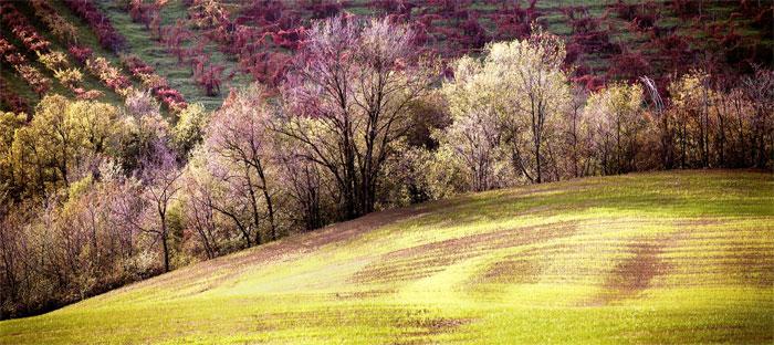 paesaggi-italia_090_SP