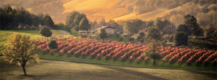 paesaggi-italia_093_SP