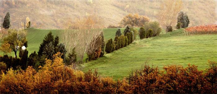 paesaggi-italia_102_SP
