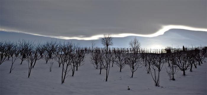 paesaggi-italia_108_SP