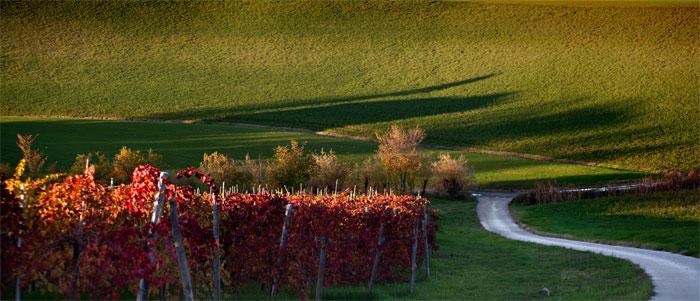 paesaggi-italia_117_SP