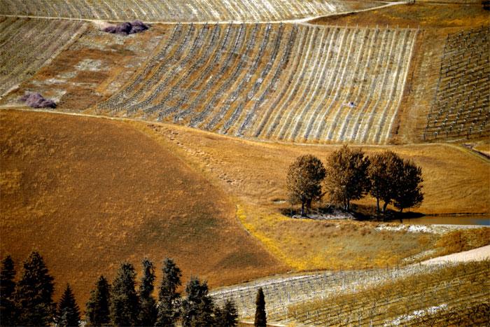 paesaggi-italia_125_SP