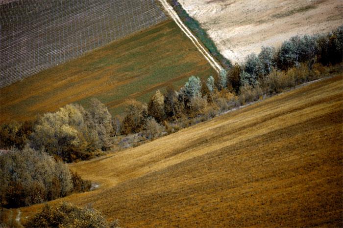 paesaggi-italia_127_SP