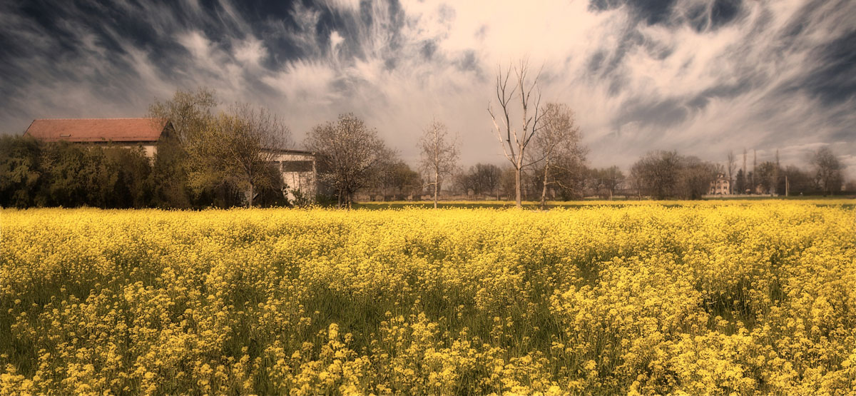 paesaggi-italia_135_SP
