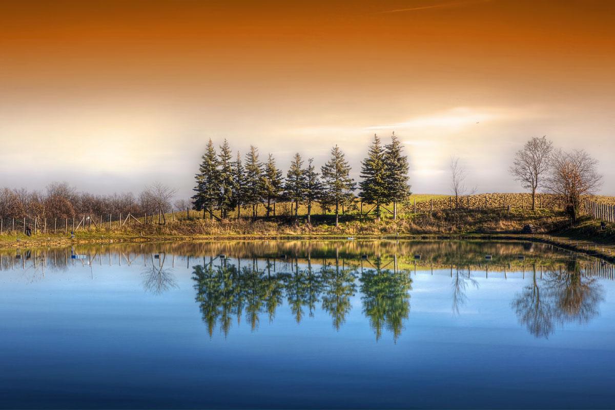 paesaggi-italia_145_SP
