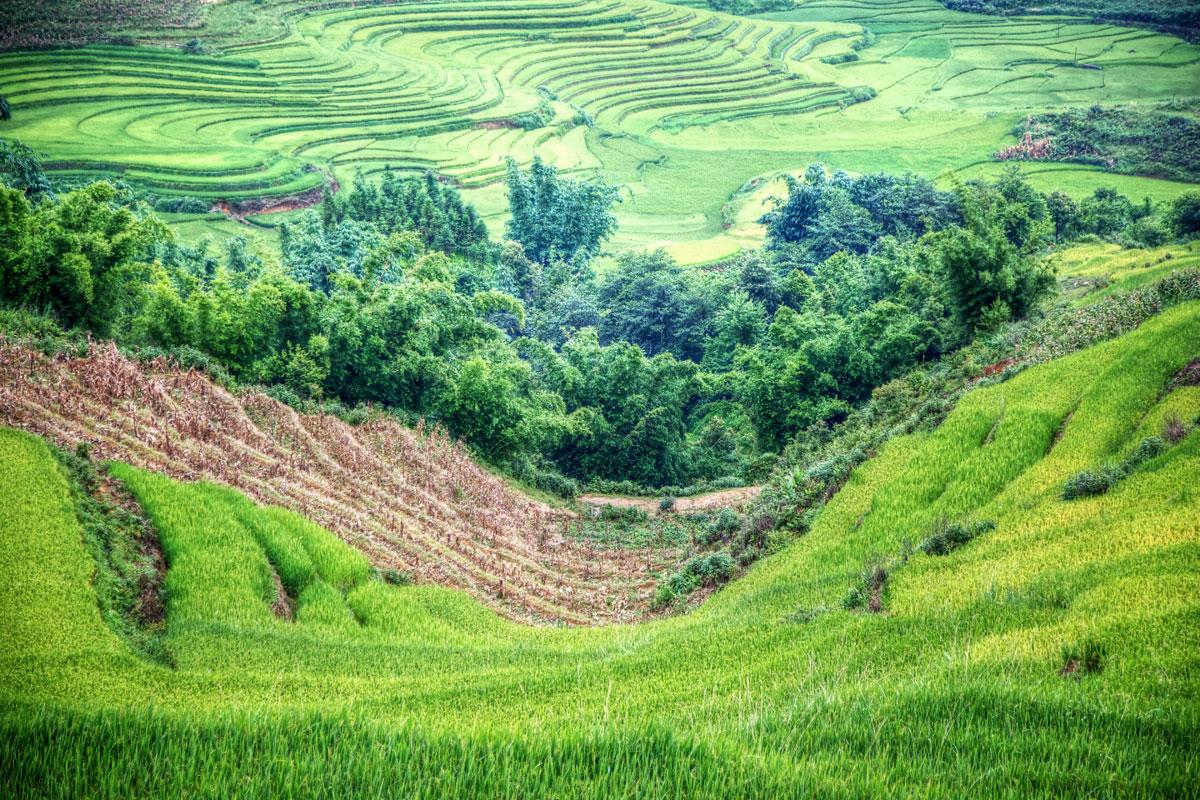 paesaggi-vietnam_011_SP