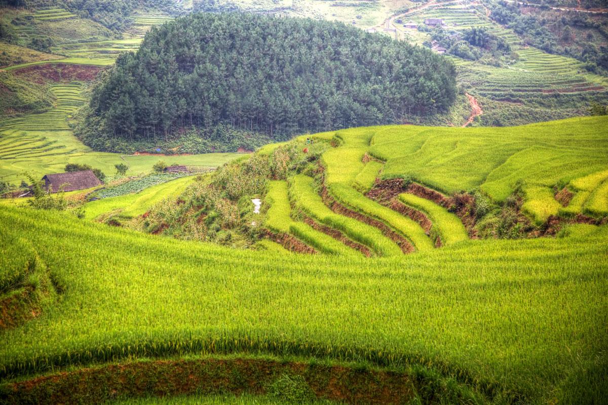 paesaggi-vietnam_012_SP