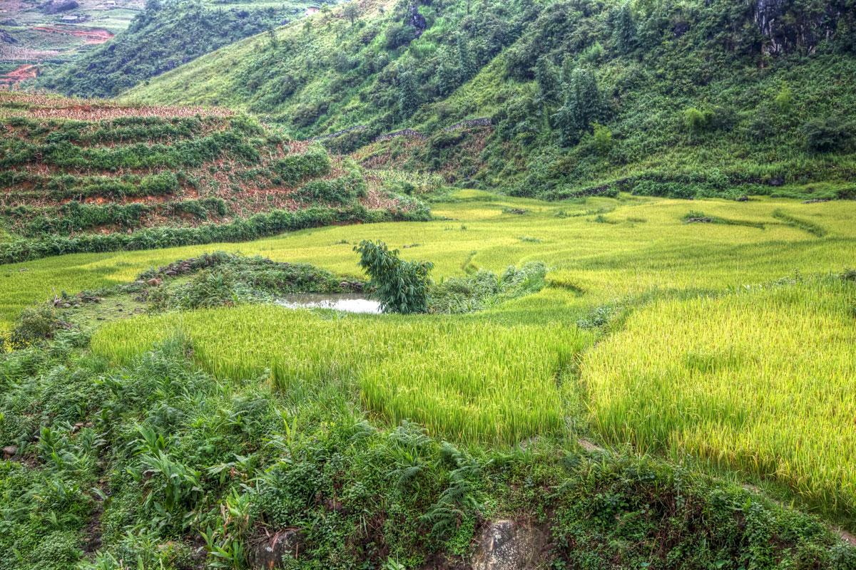 paesaggi-vietnam_014_SP