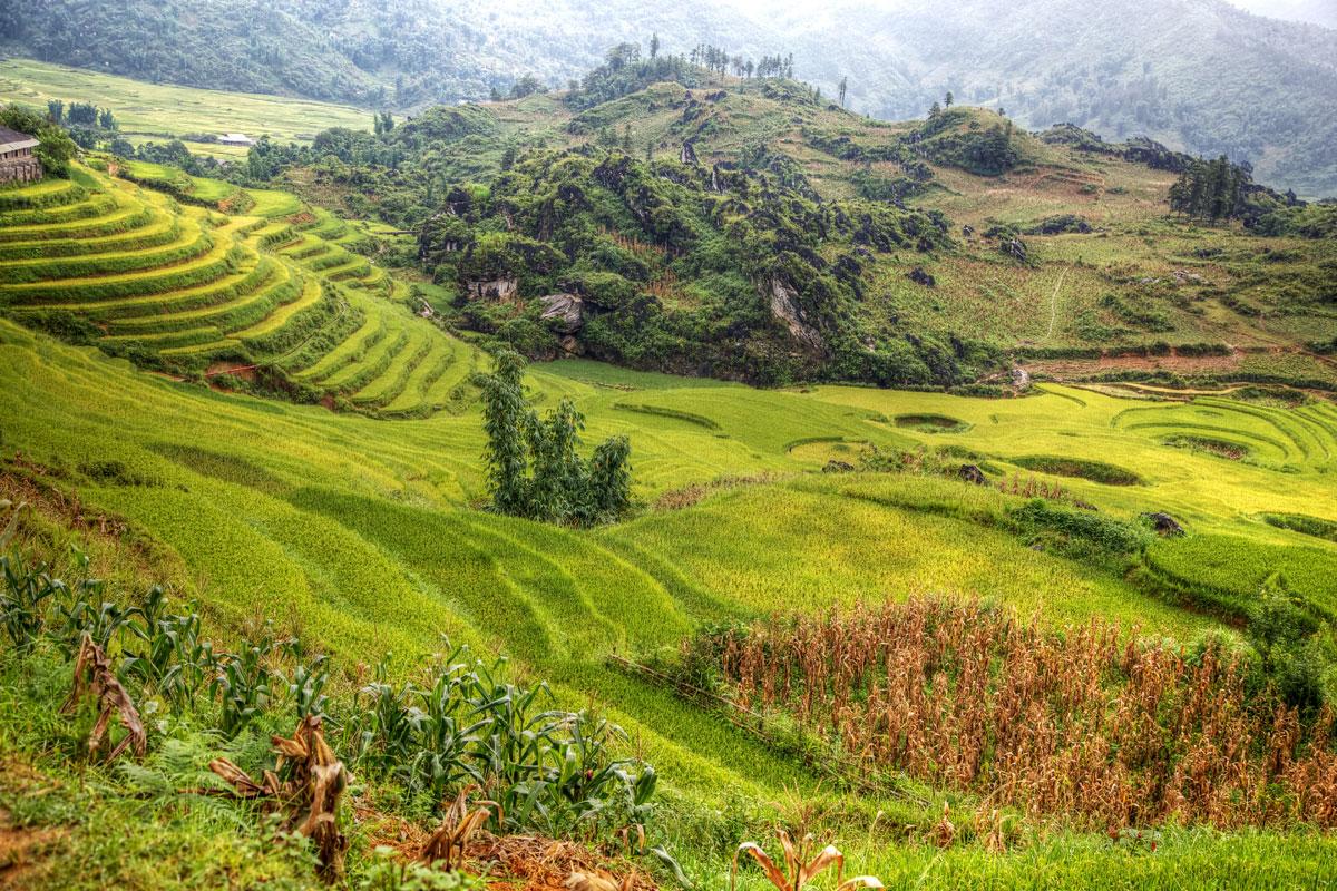 paesaggi-vietnam_017_SP