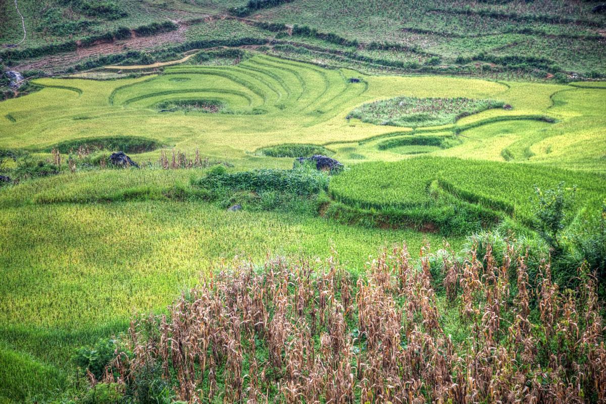 paesaggi-vietnam_019_SP