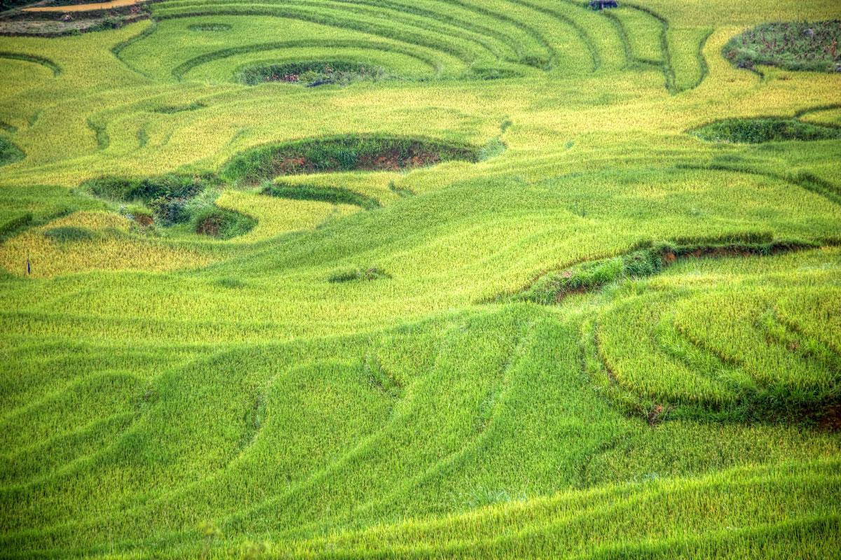 paesaggi-vietnam_020_SP