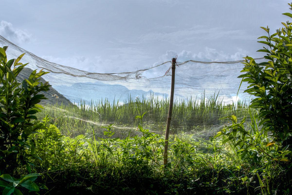 paesaggi-vietnam_028_SP