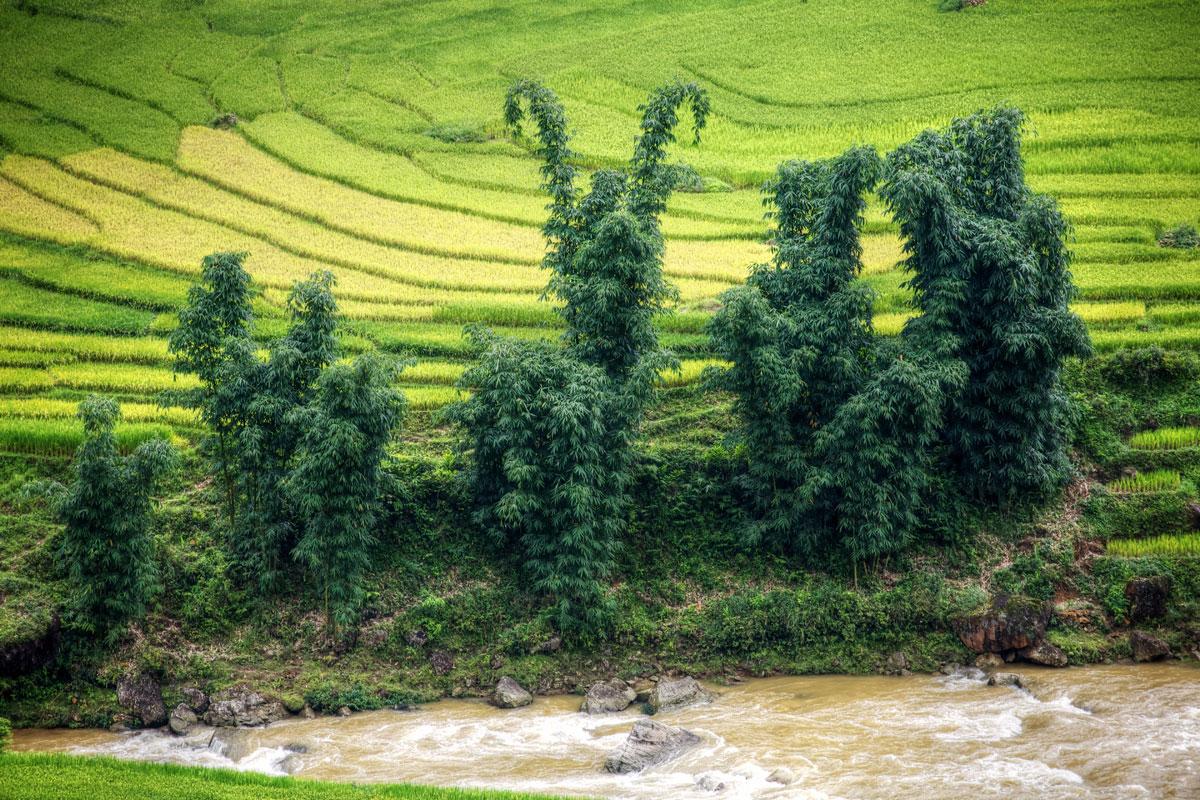 paesaggi-vietnam_033_SP