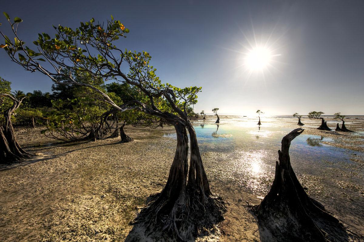 paesaggi-timor-sumba_10_SP