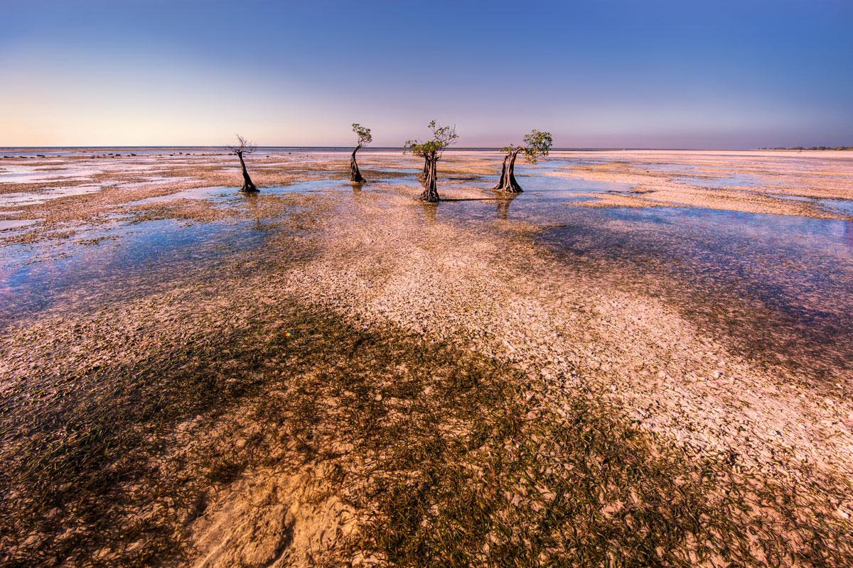paesaggi-timor-sumba_11_SP