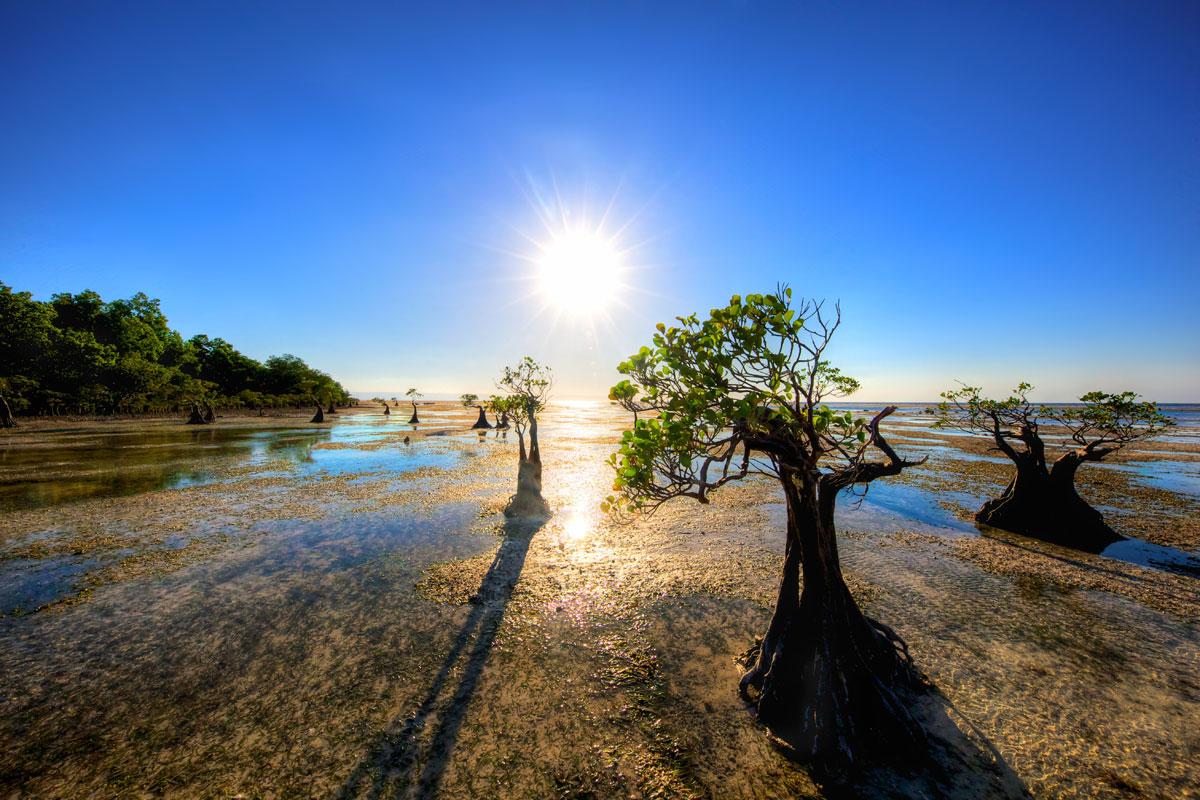 paesaggi-timor-sumba_12_SP