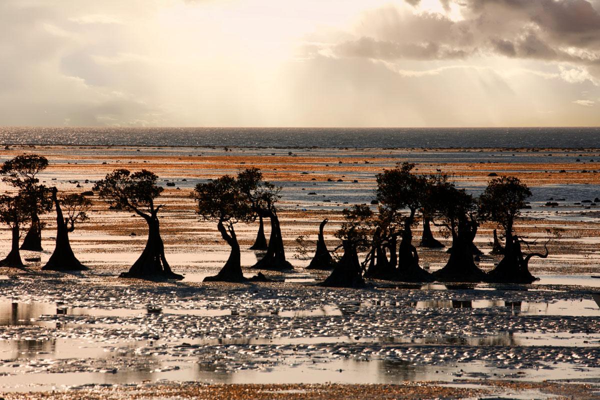 paesaggi-timor-sumba_19_SP