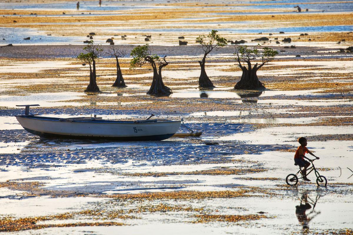 paesaggi-timor-sumba_20_SP