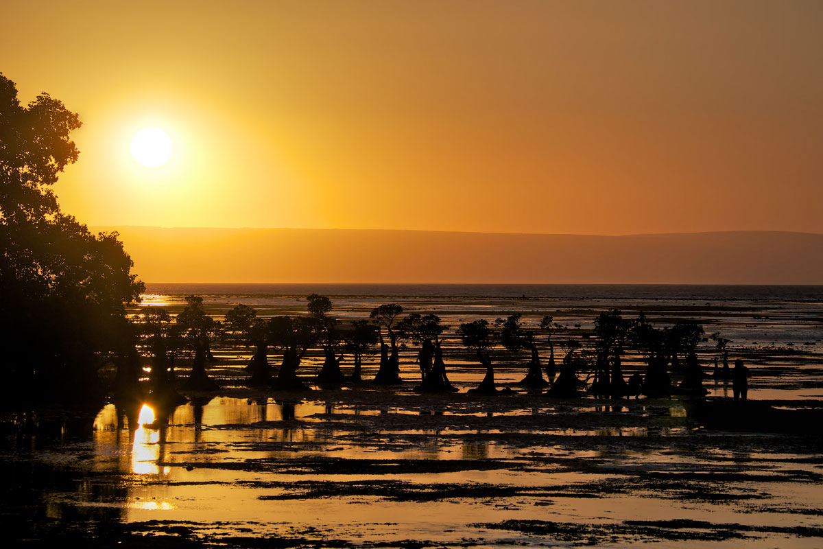 paesaggi-timor-sumba_21_SP