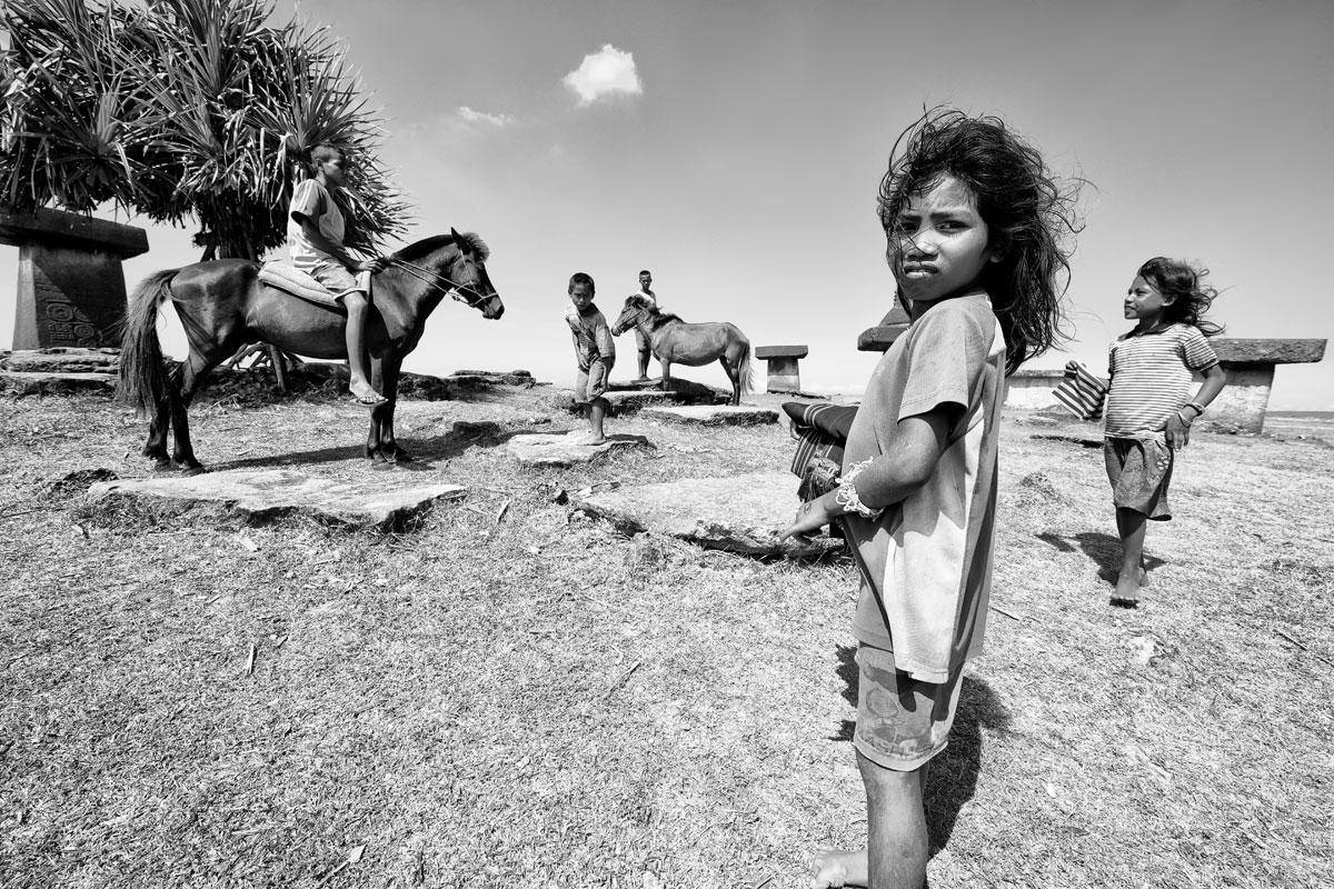 timor-sumba_04_SP