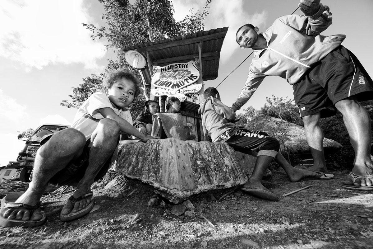timor-sumba_22_SP