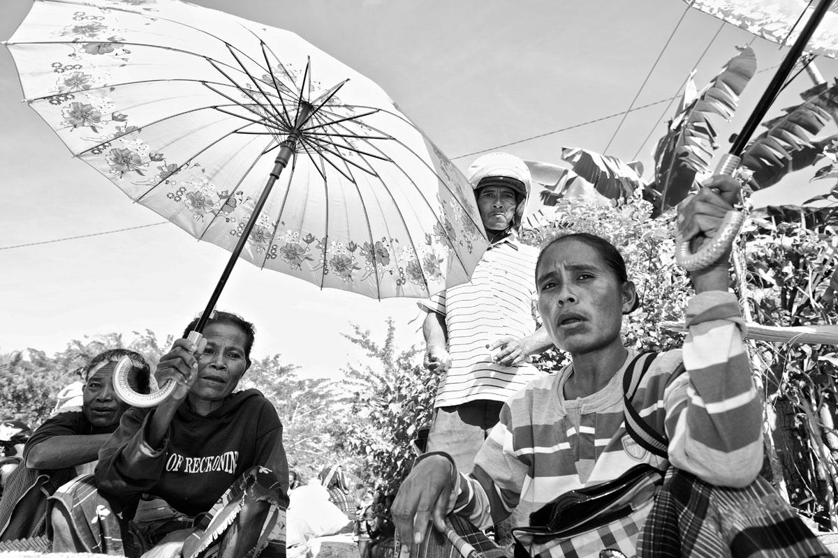 timor-sumba_32_SP