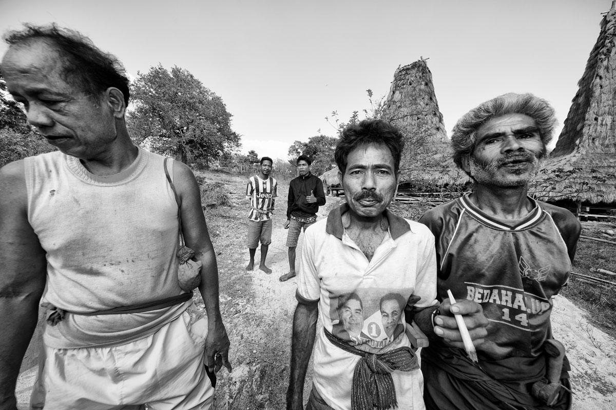 timor-sumba_40_SP