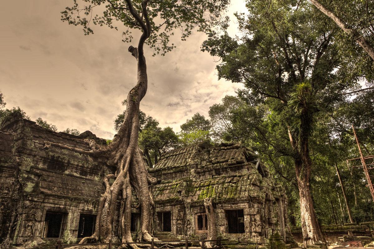 paesaggi-cambogia-010-SP