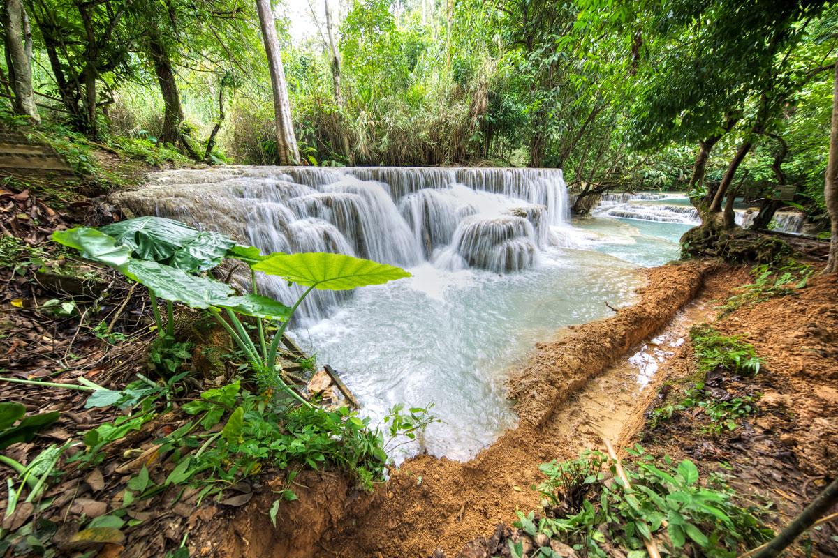 paesaggi-cambogia-012-SP